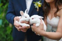 Pares do casamento com dois coelhos pequenos Imagem de Stock