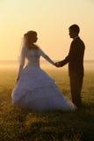 Pares do casamento da dança Imagens de Stock Royalty Free
