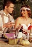 Pares do casamento na natureza Fotos de Stock Royalty Free