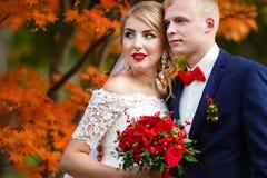 Pares do casamento na queda foto de stock