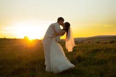 Pares do casamento no por do sol Foto de Stock Royalty Free