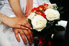 Pares do casamento A noiva e o noivo Fotos de Stock Royalty Free