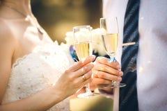 Pares do casamento que guardam vidros de vinho imagens de stock