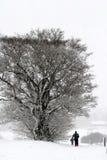 Pares do inverno no esqui Fotografia de Stock Royalty Free