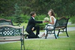 Pares do Newlywed no amor Foto de Stock