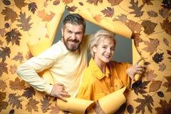 Pares do outono na roupa e nos olhares do outono muito sensualmente Acople no amor que veste na roupa sazonal elegante que tem imagens de stock royalty free