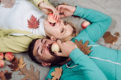 Pares do outono que comem a maçã e os olhares muito sensualmente Os pares engra?ados est?o preparando-se para a venda do outono P fotografia de stock royalty free