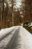 Pares do turista em sua maneira ao castelo de Peles em Sinaia, Romênia Estrada gelada em uma floresta foto de stock