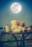 Pares dos ursos de peluche do conceito com amor e relacionamento para valent Fotografia de Stock