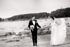 Pares elegantes de la boda que se colocan en orilla de mar Los recienes casados est?n caminando por el mar Rebecca 36 imagen de archivo