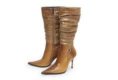 Pares elegantes de los zapatos de la mujer en un fondo blanco Imagenes de archivo
