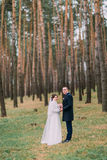 Pares elegantes felices del recién casado en bosque joven romántico del pino del verano Imágenes de archivo libres de regalías