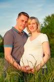 Pares embarazados en el parque Fotografía de archivo libre de regalías