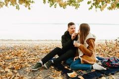 Pares en amor en comida campestre imagen de archivo libre de regalías