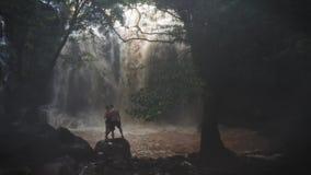 Pares en amor debajo de una cascada en una cueva Un par de amantes r tropics Viaje Tiro aéreo concepto del recorrido almacen de metraje de vídeo