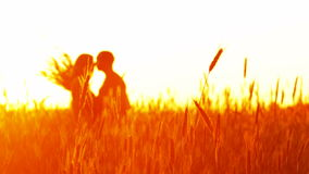 Pares en amor en la puesta del sol en trigo almacen de video