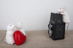 Pares en amor en photoshoot Imagenes de archivo