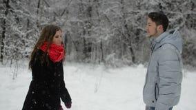 Pares en amor en un bosque nevoso metrajes