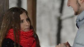 Pares en amor en un bosque nevoso almacen de video