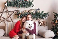 Pares en amor en un sofá gris al lado del árbol de navidad y de los presentes, jugando con el perro de Husky Eskimo de los perrit Imágenes de archivo libres de regalías