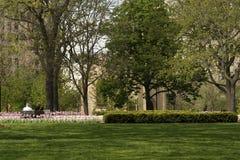 Pares en banco en parque el día de primavera Foto de archivo