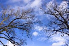 Pares en cielo foto de archivo libre de regalías