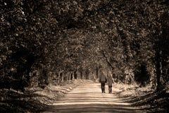 Pares en el parque Foto de archivo libre de regalías