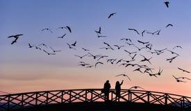 Pares en el puente en la puesta del sol Imagenes de archivo
