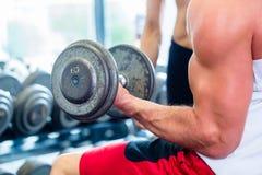 Pares en gimnasio de la aptitud con las pesas de gimnasia que levantan el peso Fotografía de archivo