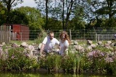 Pares en la charca florecida rosada del jardín Fotos de archivo