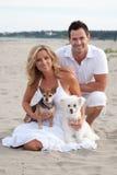 Pares en la playa con los perros caseros Imágenes de archivo libres de regalías