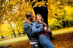 Pares en parque del otoño fotografía de archivo