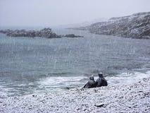Pares en una playa debajo de la nieve Imagen de archivo