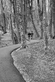 Pares en una trayectoria que camina fotos de archivo