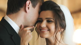 Pares encantadores de la boda almacen de video