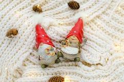 Pares engraçados de gnomos do Natal em tampões vermelhos Imagens de Stock Royalty Free