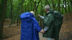 Pares envejecidos de amor alegres que se colocan en el bosque metrajes