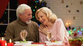 Pares envejecidos felices que sonríen y que ríen, teniendo buen tiempo junto el víspera de Navidad almacen de video