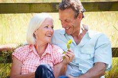 Pares envelhecidos meio que relaxam no campo Imagem de Stock Royalty Free
