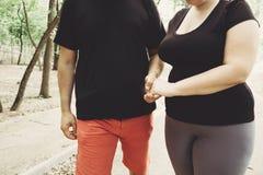 Pares excessos de peso que andam junto no parque Fotos de Stock Royalty Free