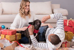 Pares felices apuestos que juegan con su perro Imagen de archivo libre de regalías