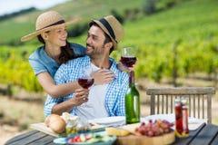 Pares felices con las copas de vino rojas que miran cada uno Fotos de archivo
