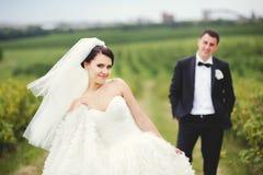 Pares felices el día de boda Fotos de archivo
