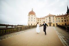 Pares felices elegantes de la boda en el castillo viejo del renacimiento hermoso del fondo Novio y novia románticos del recién ca imagenes de archivo