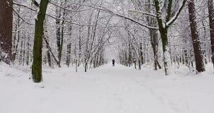 Pares felices en bosque del invierno almacen de video