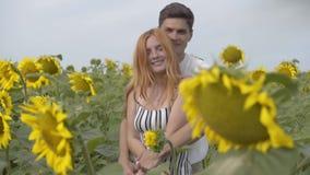 Pares felices hermosos que abrazan en el campo del girasol Muchacha del jengibre con su novio que descansa al aire libre Conexión almacen de video