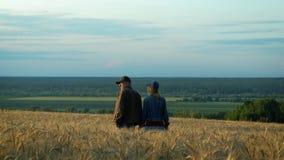 Pares felices, hombre de mediana edad y mujer hablando y sonriendo mientras que camina en campo de trigo en la tarde del verano d almacen de metraje de vídeo