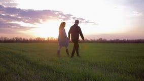 Pares felices jovenes de los amantes que caminan en campo verde en el ocaso contra el cielo rosado brillante almacen de video