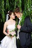 Pares felices, novia y novio, en una caminata de la boda Imagen de archivo libre de regalías