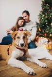 Pares felices que abrazan el abarcamiento en el árbol de navidad con las luces y Imagen de archivo libre de regalías